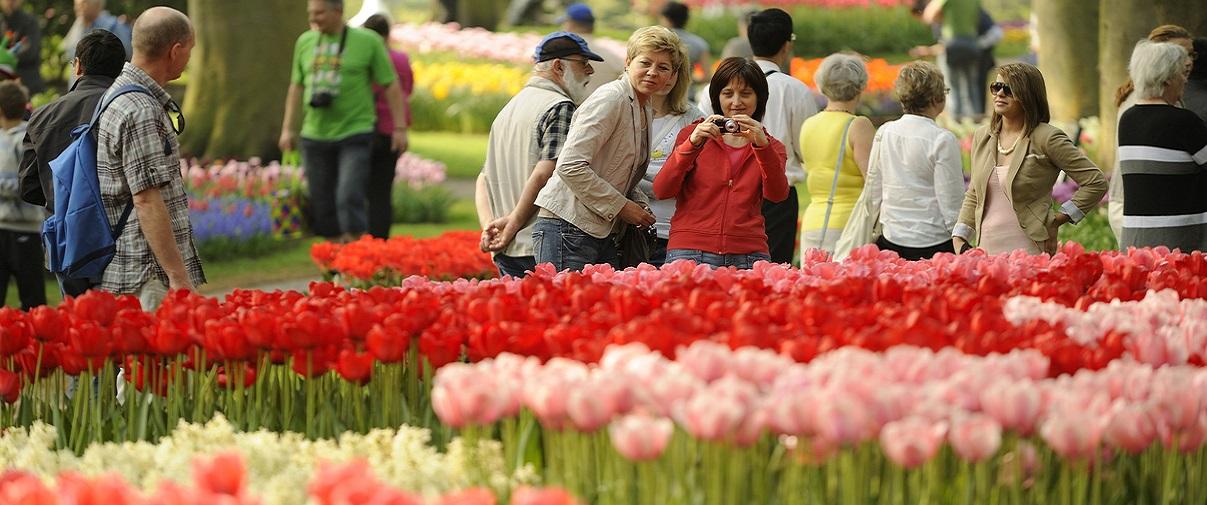 蘭キューケンホフ公園,春